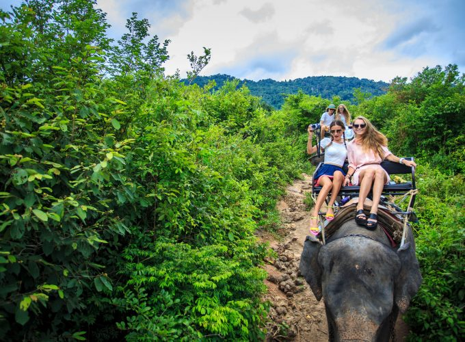 Tours, Activities & Transfer Services on Phuket, Koh Samui